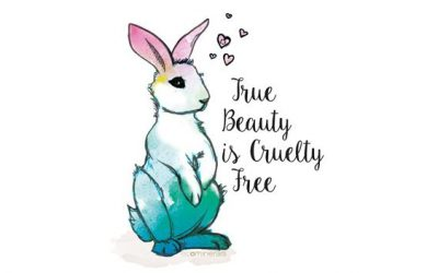 my cruelty-free journey I